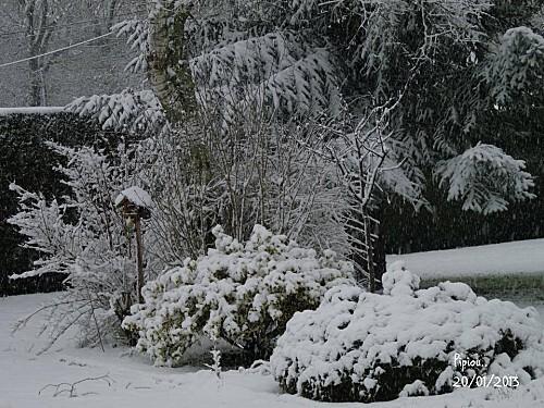 neige-20-janv-2013--5-.jpg