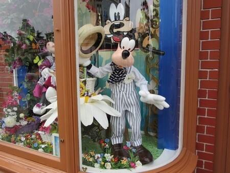 Disneyland 12