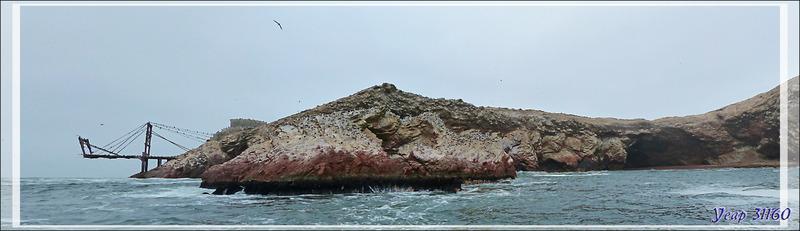 Ponton de chargement du guano et la falaise aux fous - Iles Ballestas - Pérou