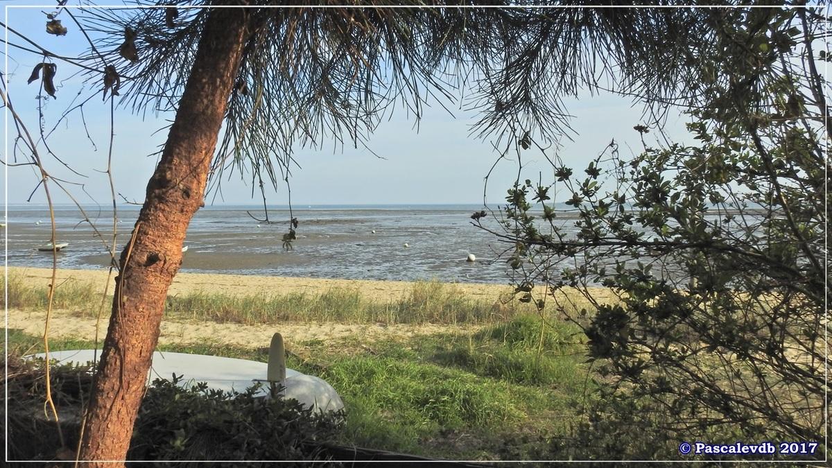 Pointe aux Chevaux - Février 2017 - 3/10