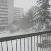 Sous la neige 2