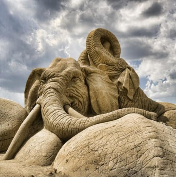 [Éléphant] Sculpture de sable de haute qualité
