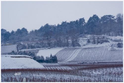 - Tempête de neige sur la Champagne