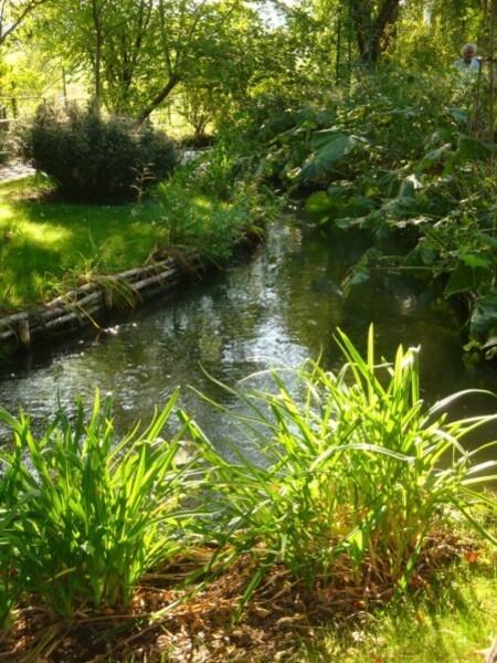 Giverny, le jardin d'eau 5