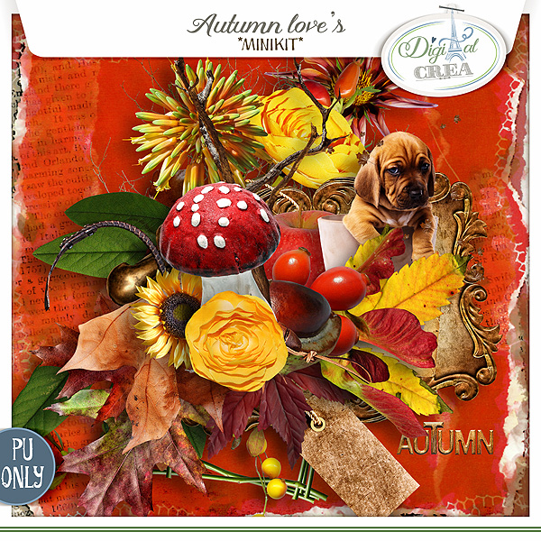 Autumn Love's Minikit De Xuxper Designs