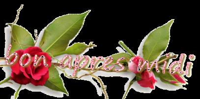 """Abécédaire """"Roses"""""""