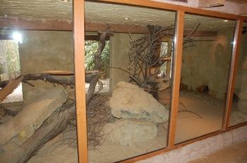 Zoo Osnabruck d50 2012 157