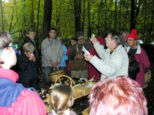 sortie champignons Signy-l'Abbaye