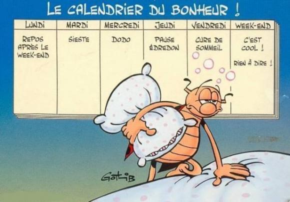 http://lancien.cowblog.fr/images/Caricatures1/lecalendrierdubonheurselongotlib.jpg