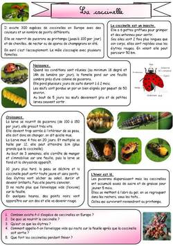 Lecture documentaire CE1 (en images) coccinelle