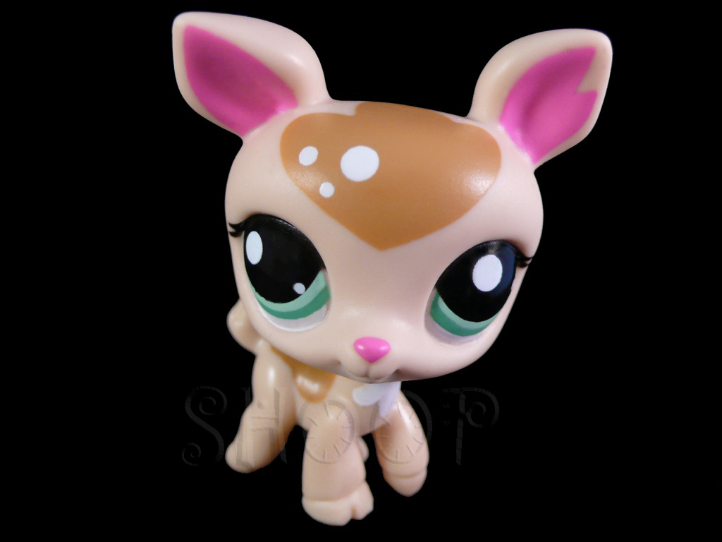 LPS 2486