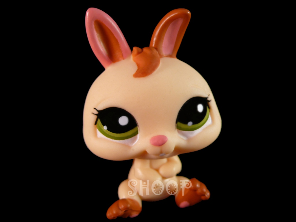 LPS 1596