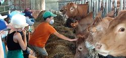 Notre visite à la ferme