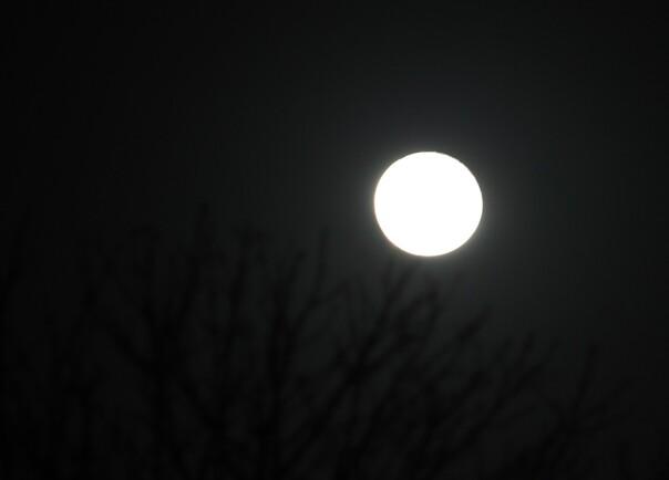 Chez Nadia: mai   la lune