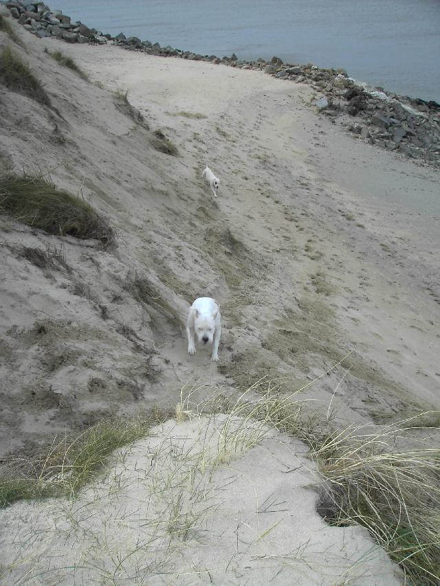 Escalader les dunes
