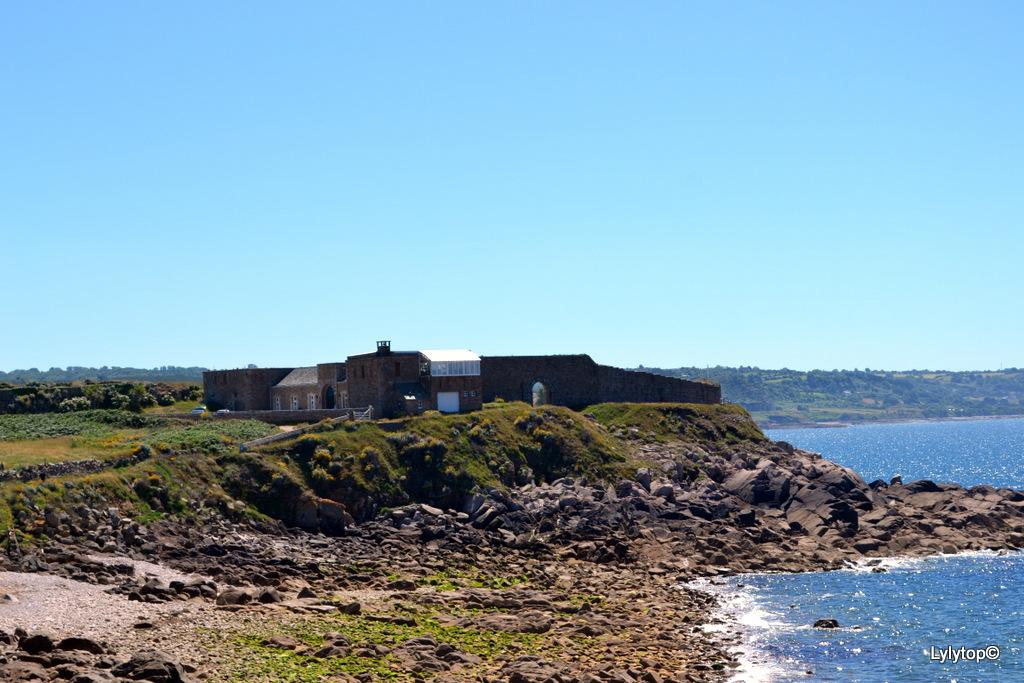 Le fort Lévi