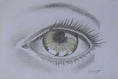 Croquis oeil 2