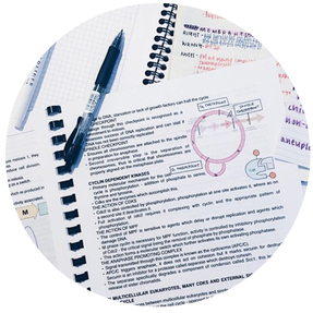 Mon brevet blanc (résultats et mon avis)