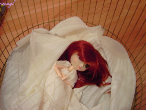 45)la cage