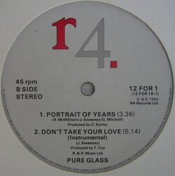 Pure Glass - Portrait Of Years