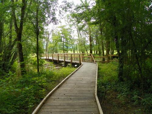 Promenade à la Réserve Naturelle du marais de Lavours