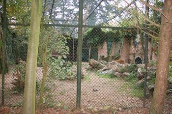 dierenpark amersfoort d50 2011 090