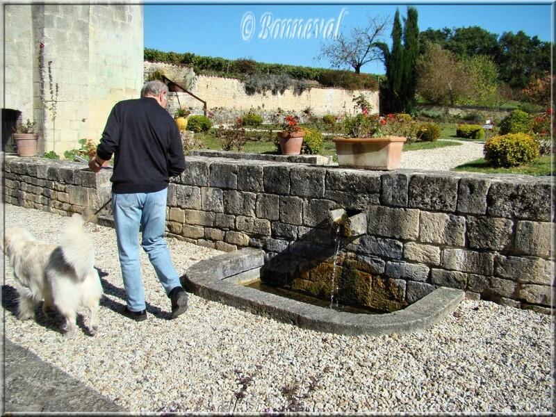 Abbaye de Fontdouce Charente-Maritime bassin dans les jardins