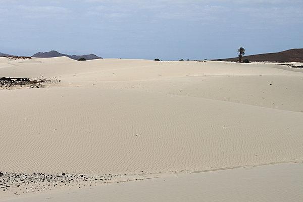 désert de viana9