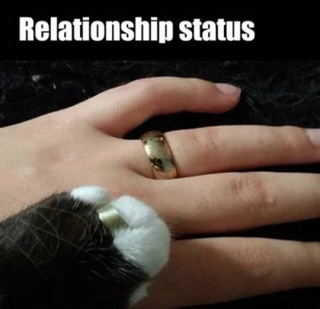 dont be forever alone on a friday 25 Dont be Forever Alone on a Friday! (30 Photos)