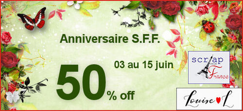 Anniversaire Scrap from France 50% off
