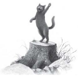 "Manga Etoile du Tigre - 1er tome ""Au milieu des bois."""