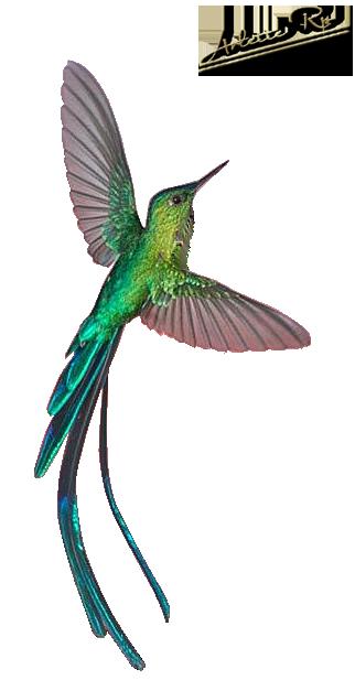 Tubs oiseaux 1