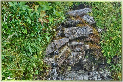 Parfois le rire de la montagne s'éperle au gosier des cascades