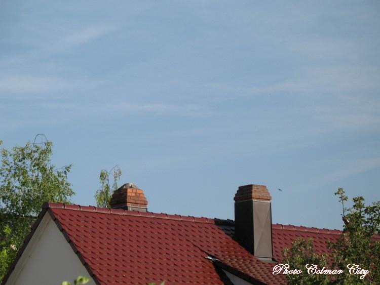 Ciel d'Alsace 167