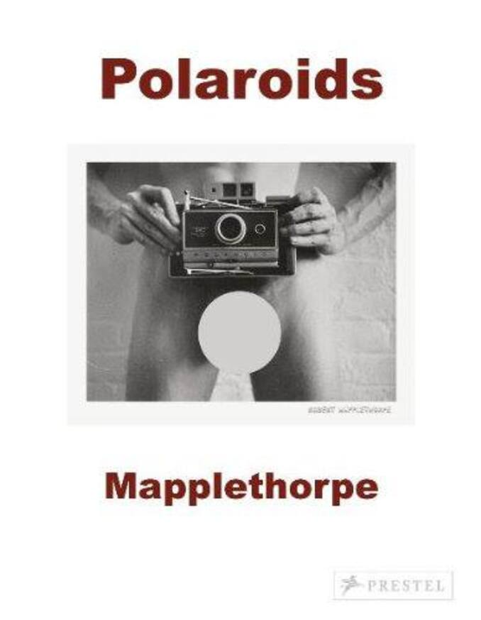 Mapplethorpe : Polaroïds