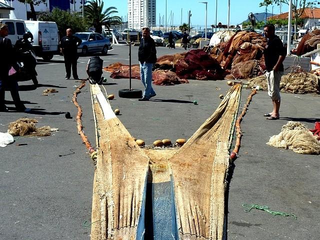 Le port de pêche de Toulon 5 Marc de Metz 2012