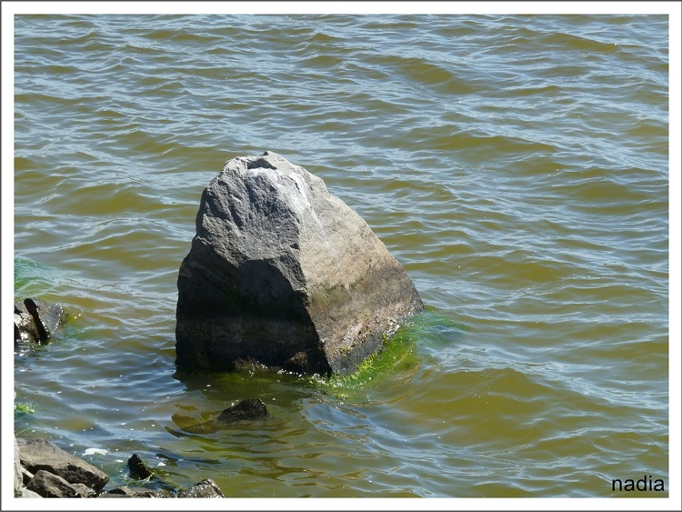 """Roche volcan? (Communauté""""Petites et grosses roches, rochers, toutes formes"""")"""