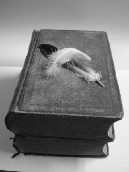 Plumes et livres