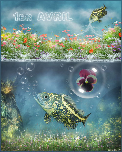 Poisson D'Avril (Photomontage)