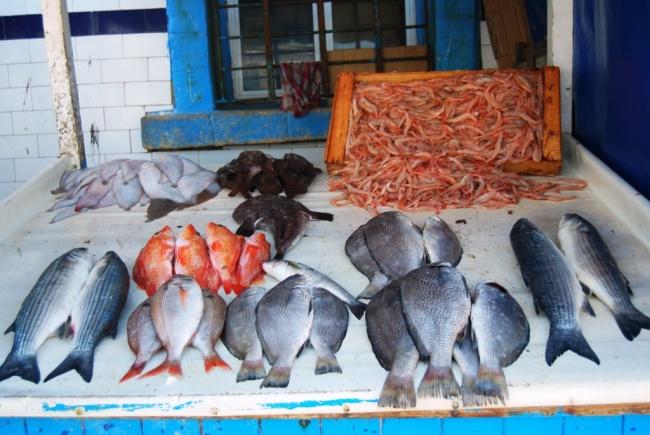 Essaouira, l'ancien petit port de pêche