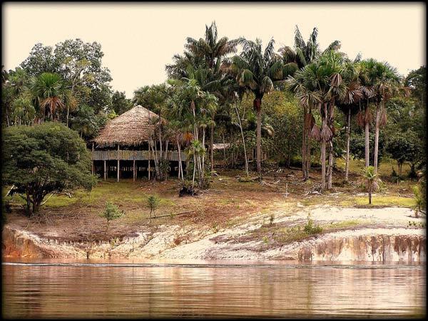 Amazonie au Bresil
