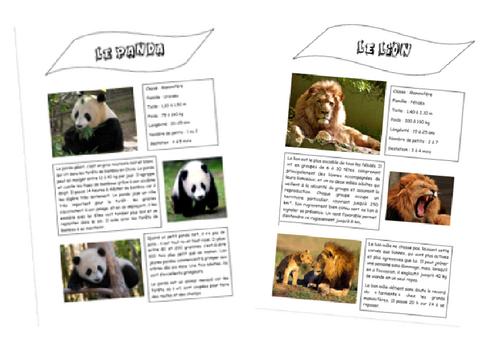 Rallye-lecture animalier