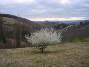 mars-2009-060.jpg