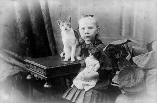 Poupée et chat