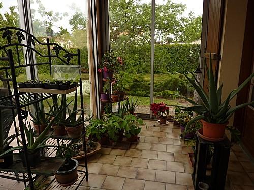 veranda-en-Mai-2010-001.jpg