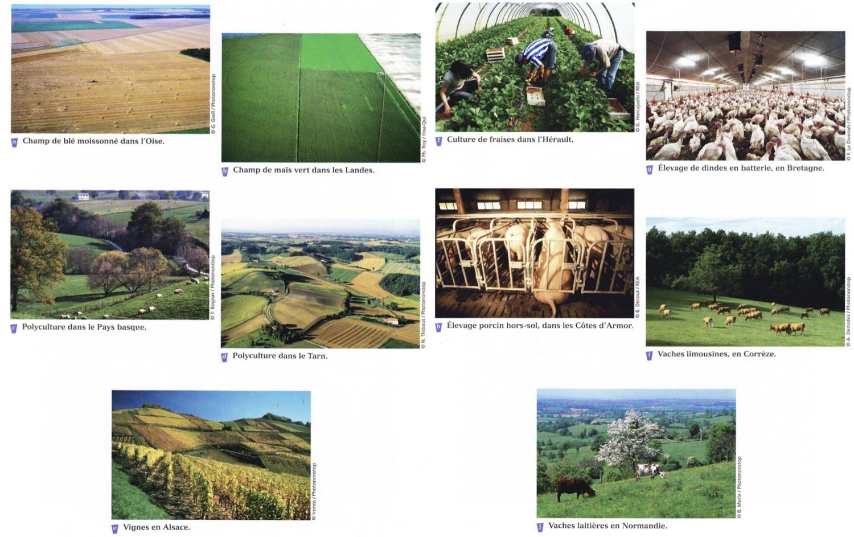 1a les paysages agricoles fran ais observer et comparer for Les paysages