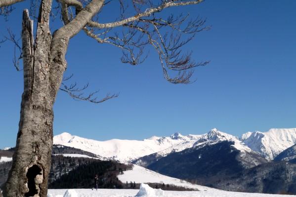 q11---Pyrenees.JPG