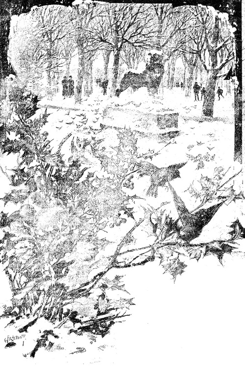 Neige au Jardin du Luxembourg (gravures des années 1900)