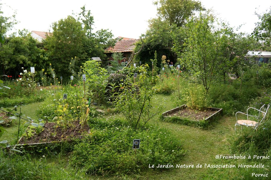 Le Jardin Naturel Association Hirondelle PORNIC - 2015