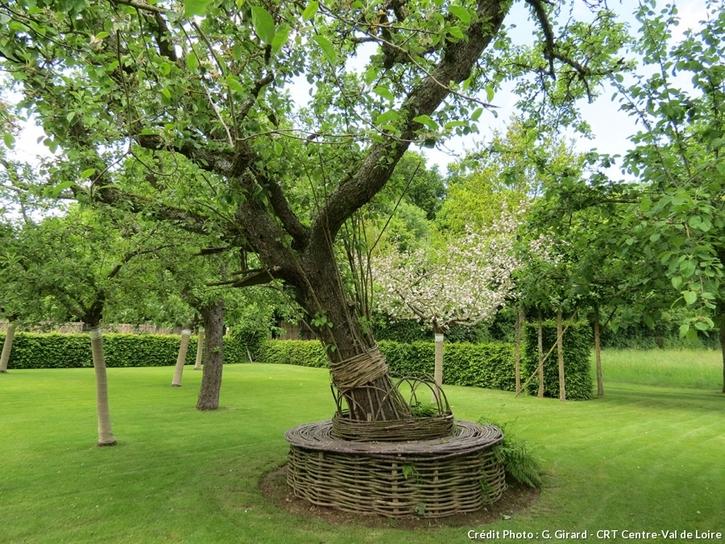 Jardins médiévaux du Prieuré Notre Dame d'Orsan